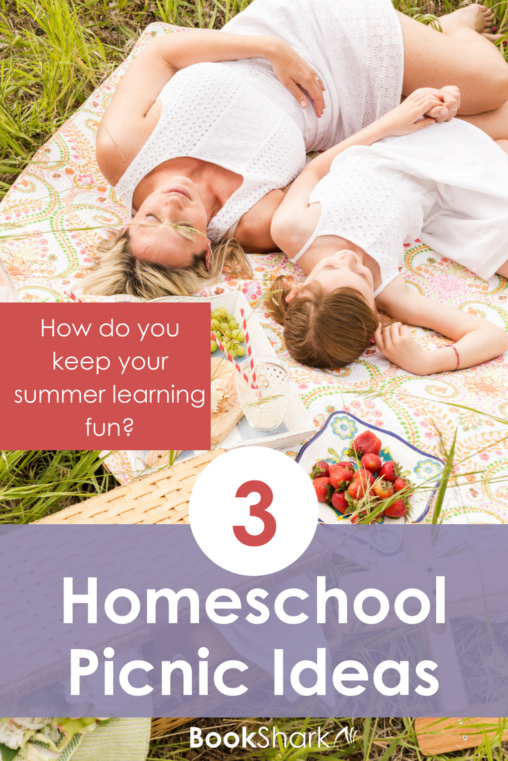 3 Homeschool Picnic Ideas to Take Your Learning Outdoors