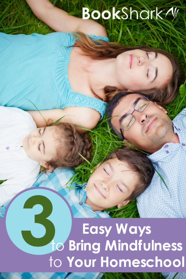 3 Easy Ways to Bring Mindfulness to Your Homeschool
