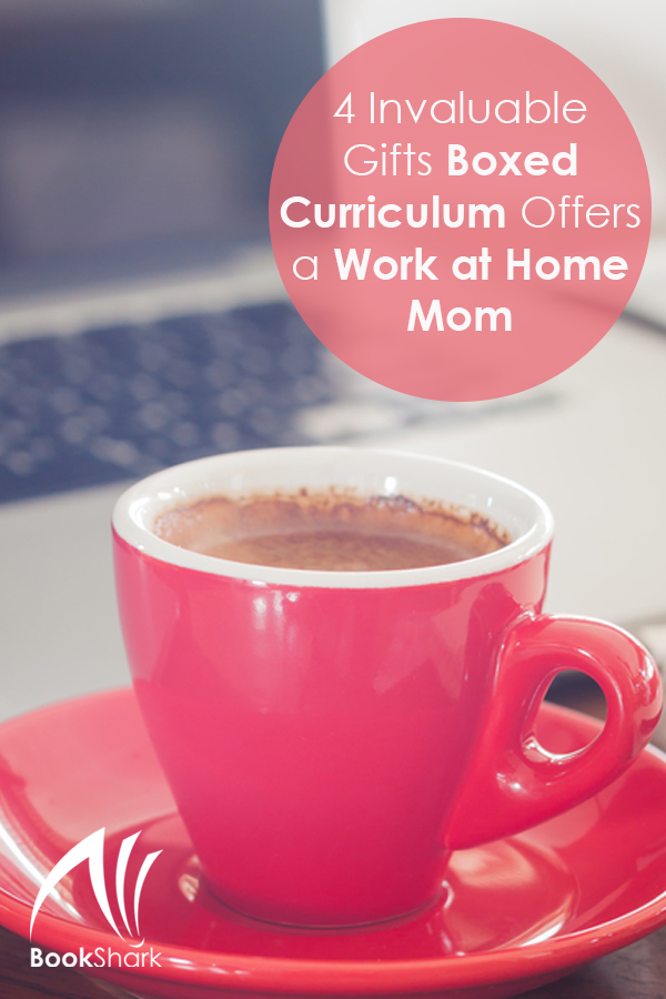 4 Invaluable Gifts Boxed Curriculum Offers a Work at Home Mom