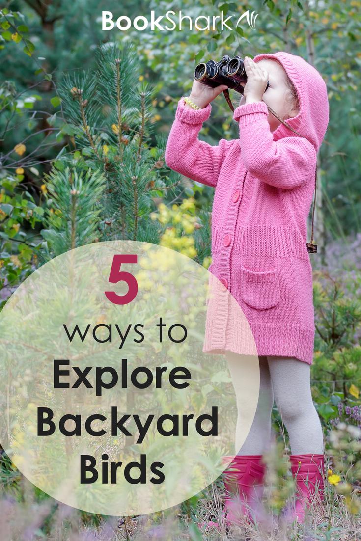 5 Ways to Explore Backyard Birds