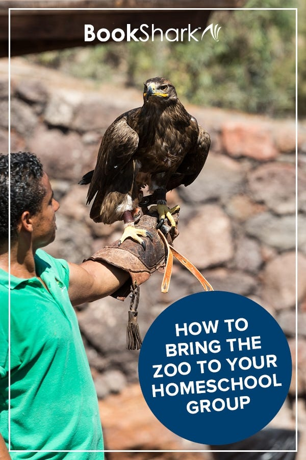 How to Bring the Zoo to Your Homeschool Group