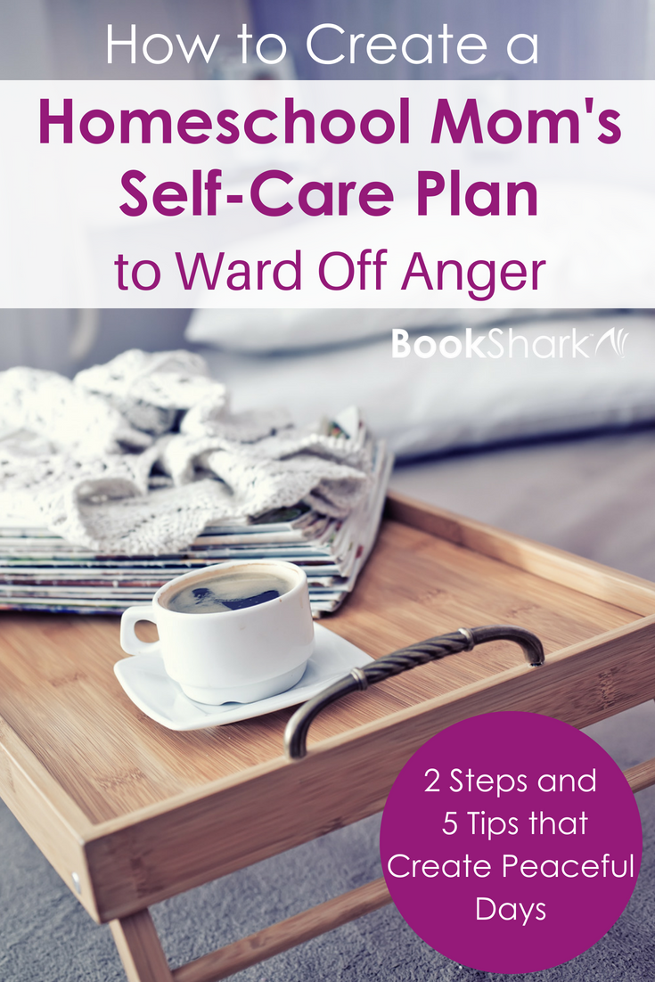 A Homeschool Mom's Self-Care Plan to Ward Off Anger