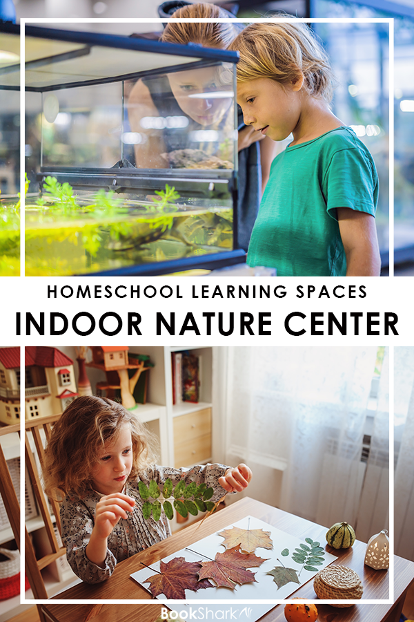 Homeschool Learning Spaces: The Indoor Nature Center