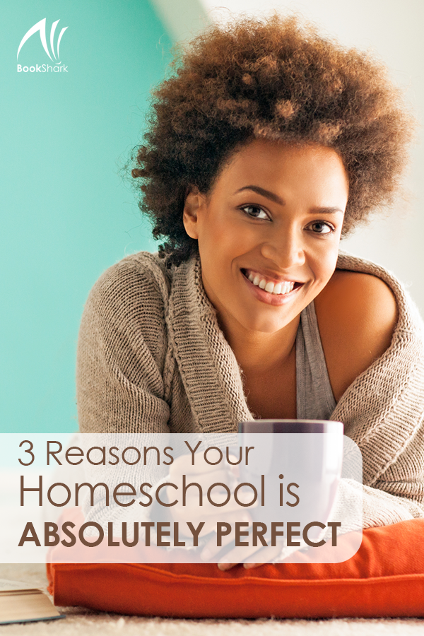 3 Reasons Your Homeschool is Absolutely Perfect