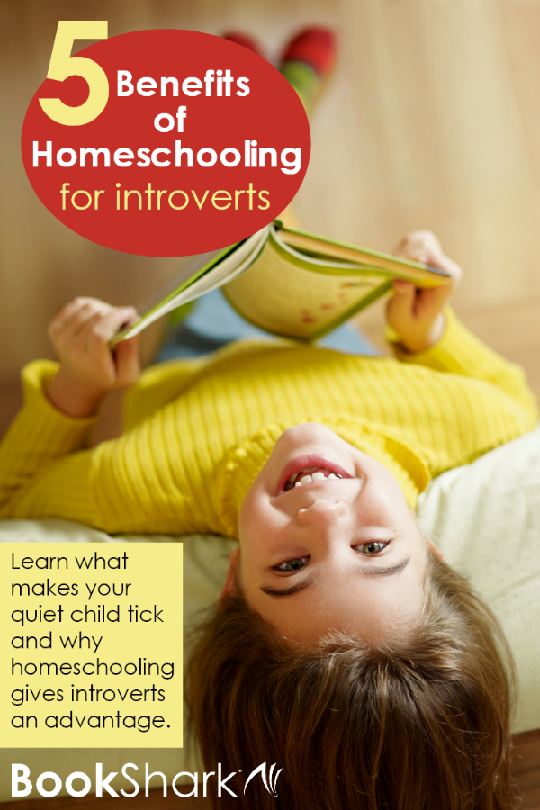 5 Benefits of Homeschooling for Introverts