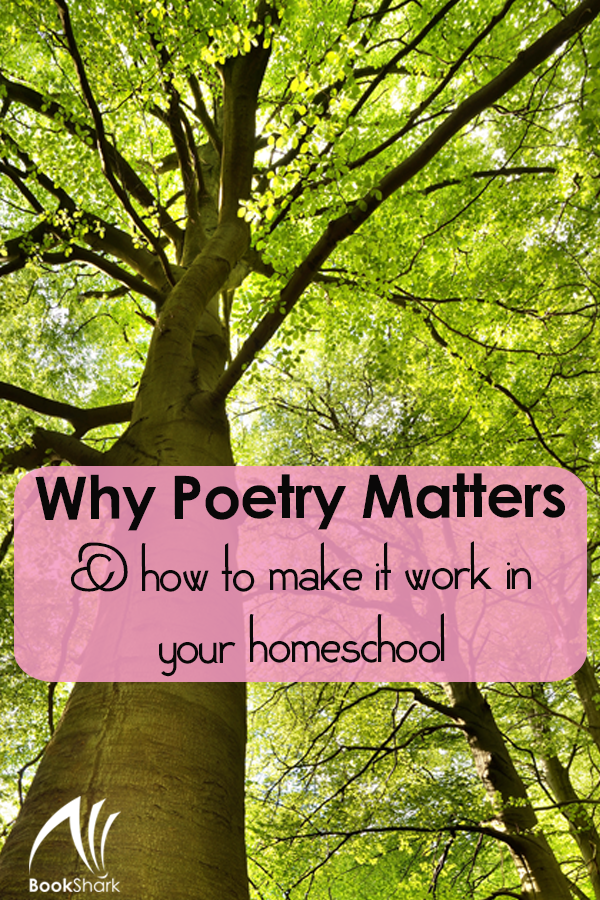 Why Poetry Matters and How to Make it Work in Your Homeschool