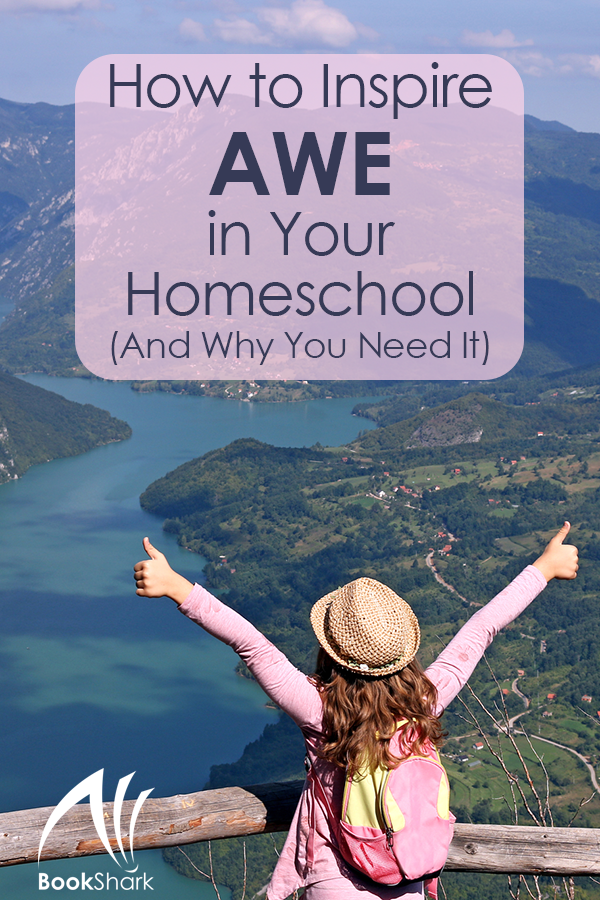 How to Inspire Awe in Your Homeschool (And Why You Need It)
