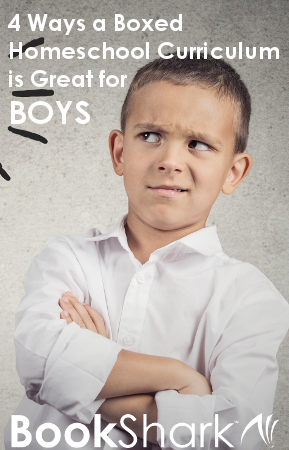 4 Ways a Boxed Homeschool Curriculum is Great for Boys