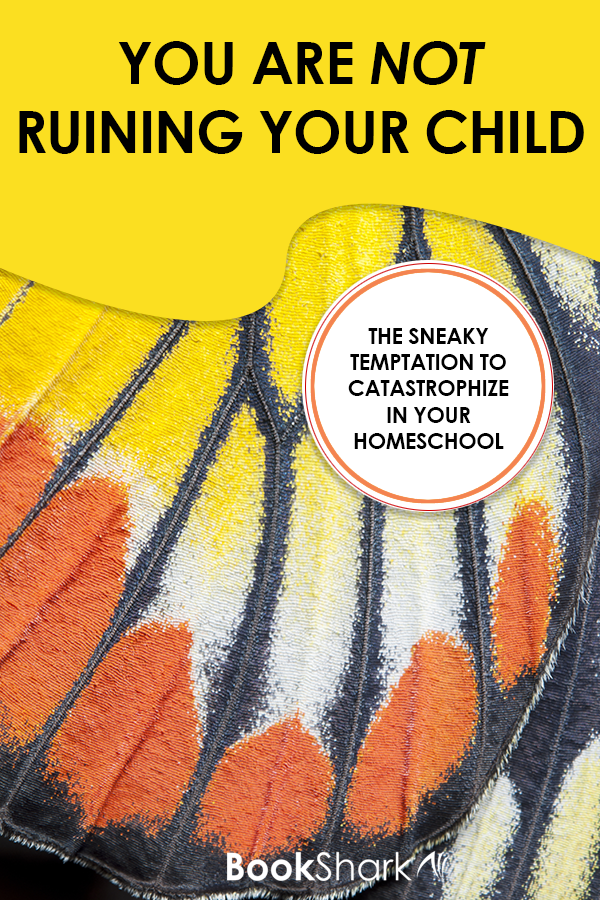You Are Not Ruining Your Child: The Sneaky Temptation to Catastrophize in Your Homeschool