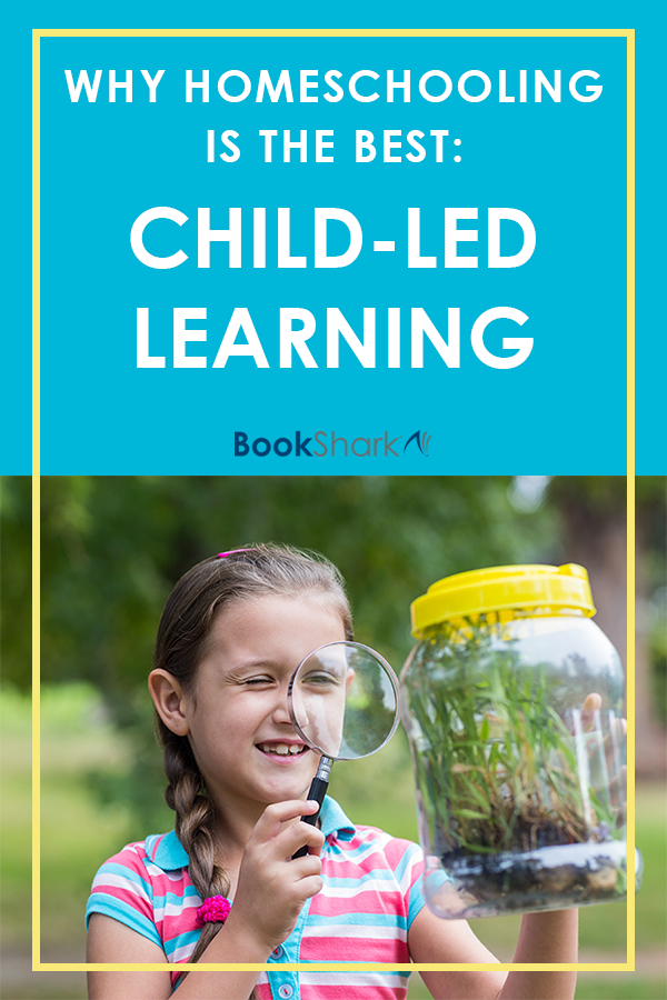 Why Homeschooling Is the Best: Child-led Learning