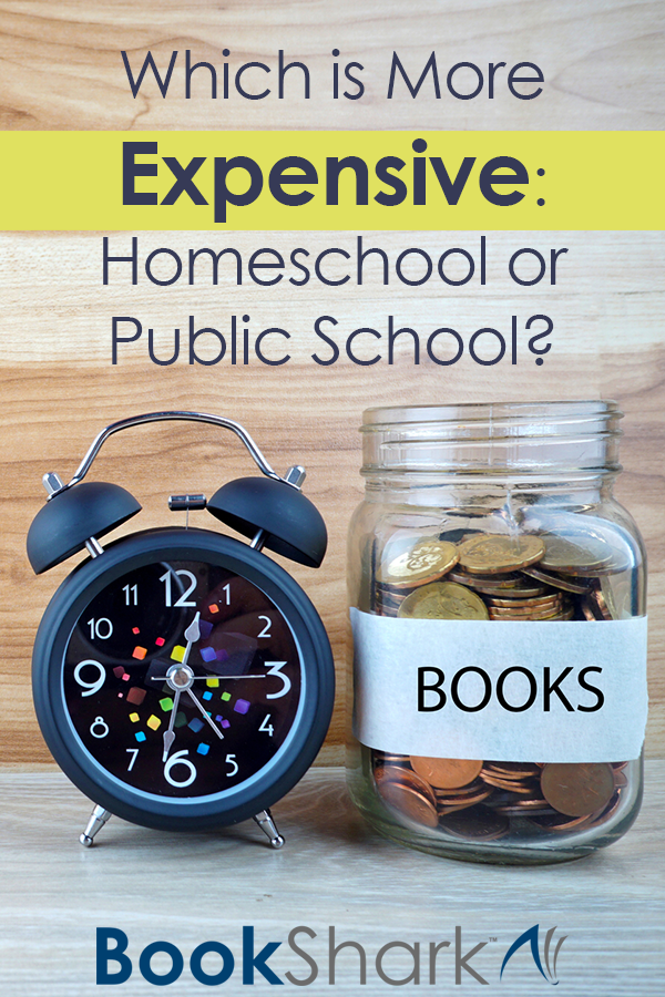 Which is More Expensive: Homeschool or Public School?