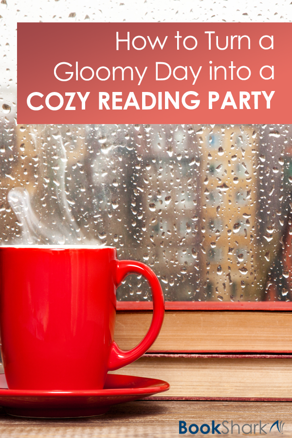 What do you do on gloomy, rainy days though? Those gray days when you're trapped inside? You create a cozy reading atmosphere and turn gloomy afternoons into beautiful memories of a cozy reading atmosphere.