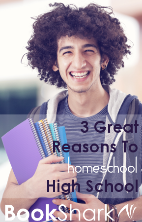 3 Great Reasons To Homeschool High School