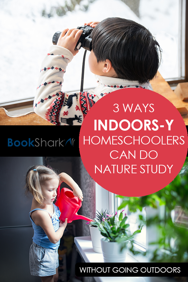 3 Ways Indoors-y Homeschoolers Can Do Nature Study Without Going Outdoors