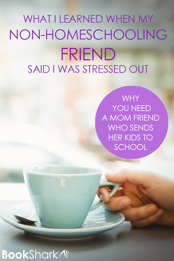 What I Learned When My Non-homeschooling Friend Said I Was Stressed Out