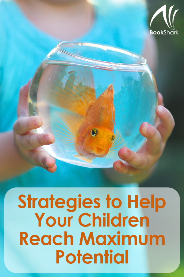 Strategies to Help Your Children Reach Maximum Potential