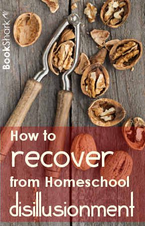 How to Recover from Homeschool Disillusionment