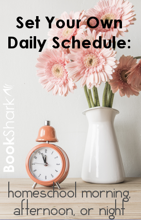 Set Your Own Daily Schedule: Homeschool Morning, Afternoon, or Night