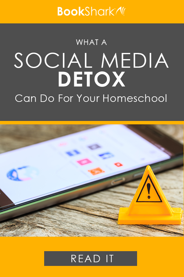 What a Social Media Detox Can Do for Your Homeschool