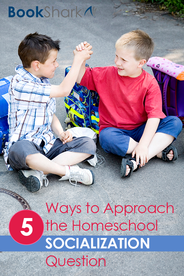 Five Ways to Approach the Homeschool Socialization Question