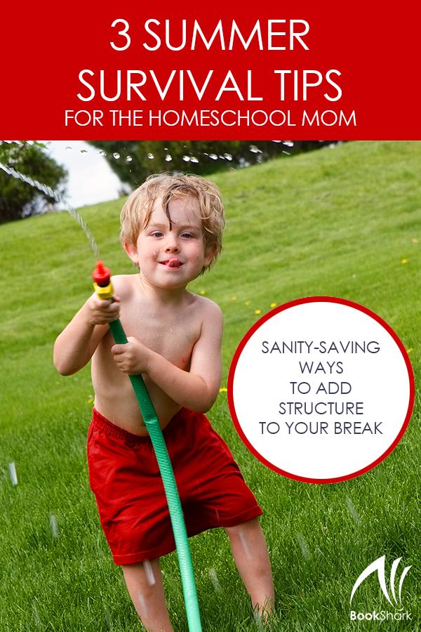 3 Summer Survival Tips for the Homeschool Mom