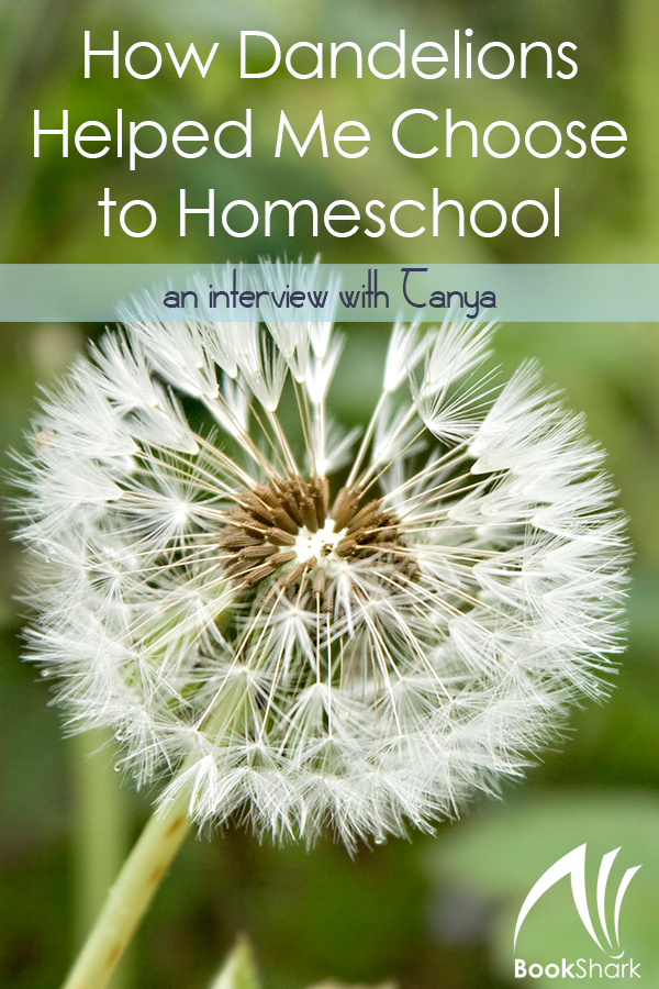 How Dandelions Helped Me Choose to Homeschool: An Interview with Tanya