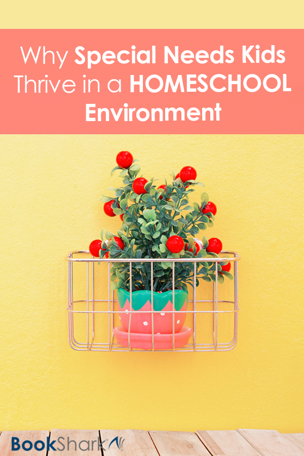Why Special Needs Kids Thrive in a Homeschool Environment