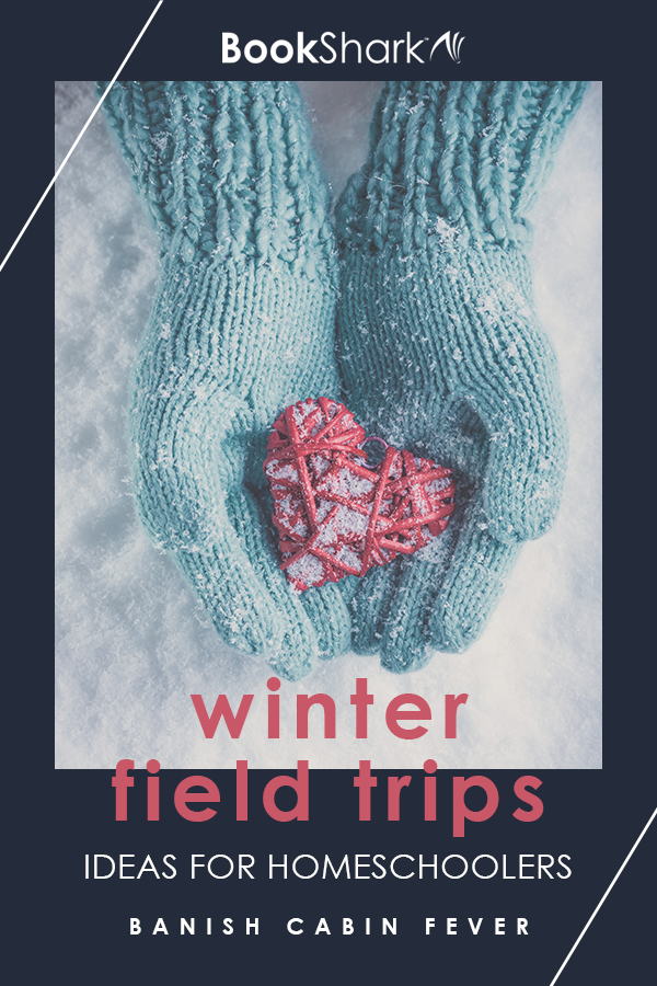 Winter Field Trip Ideas for Homeschoolers
