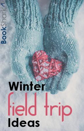 Winter Field Trip Ideas for Homeschoolers